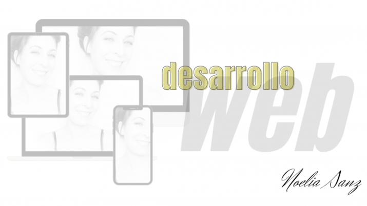 DESARROLLO WEB Y DISEÑO UX
